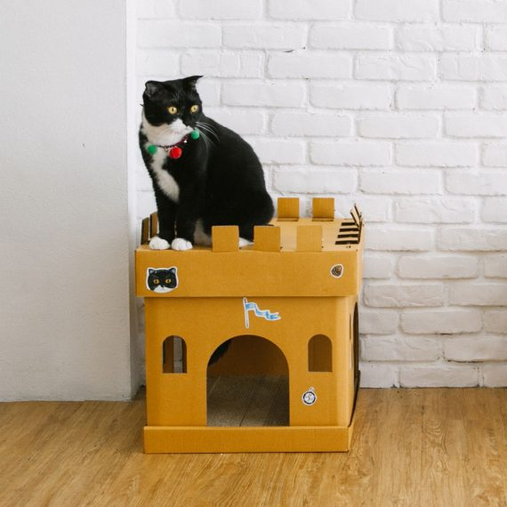 Castle Cube The Knight Sticker (The Tuxedo Cat)
