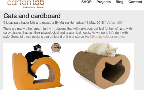 Cats and cardboard
